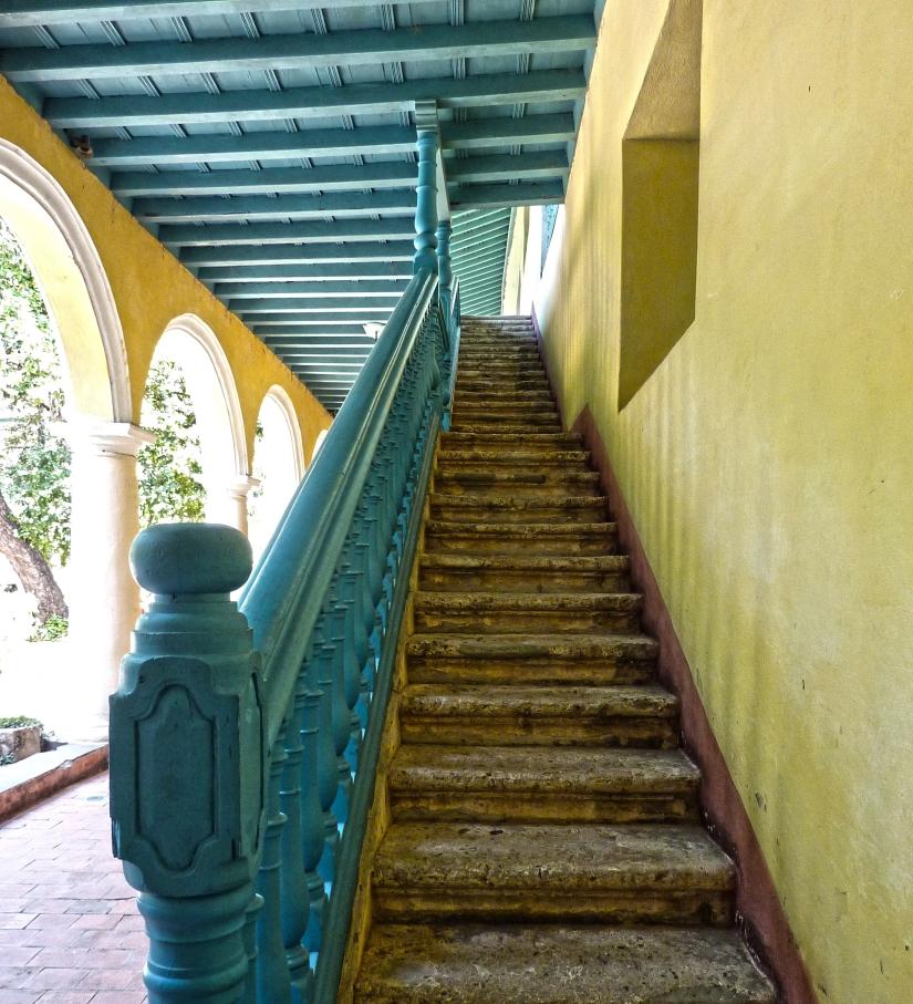 Oases of solitude inmid-Havana