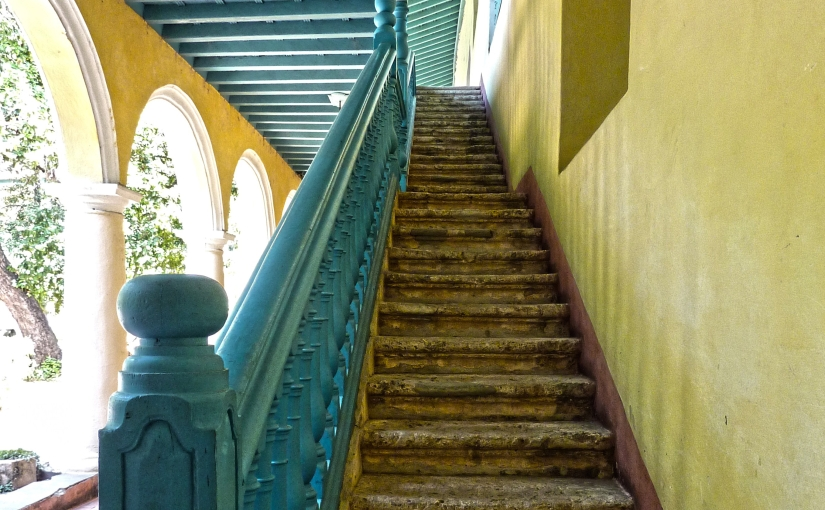 Oases of solitude in mid-Havana